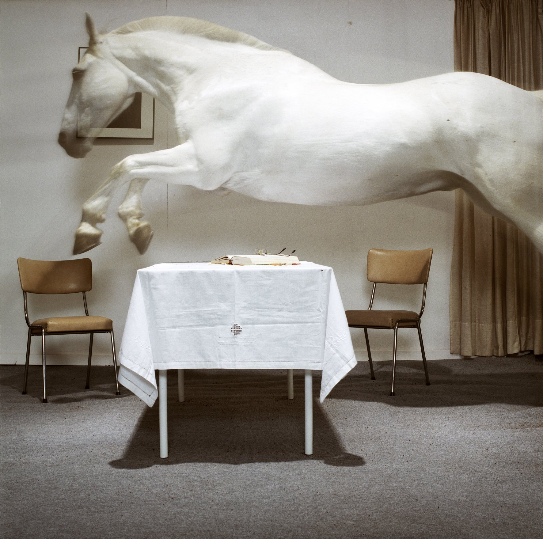 foto van Hannes Wallraven waarop een wit paard over een tafel springt